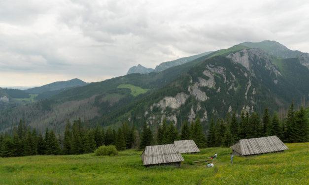 Hala Stoły – klidné místo nad Dolinou Kościeliska